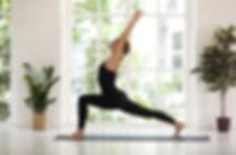 Yoga Flow (Vinyasa Yoga) | Eryns Yoga in Barrhaven, Nepean, Ontario