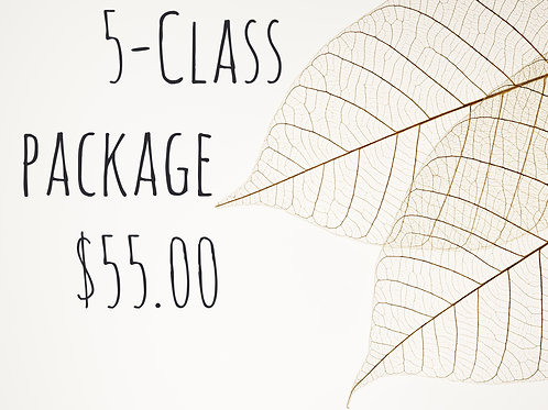 5-Class Package