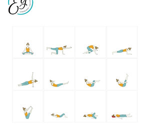 FREE PDF download Core Flow Sequence for home yoga practise | Eryns Yoga in Barrhaven, Nepean, Ontario