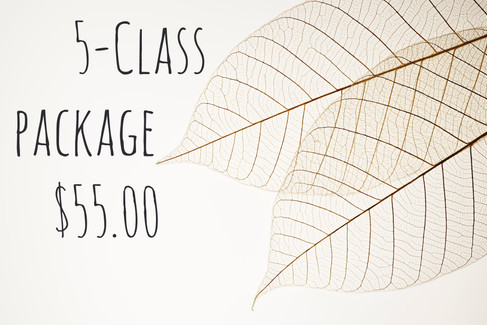 5-Class Packages