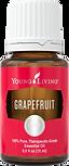 GrapefruitSilo.png