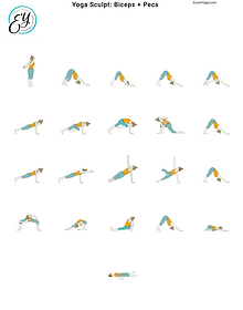FREE PDF download Yoga Sculpt Biceps-Pec Sequence for home yoga practise | Eryns Yoga in Barrhaven, Nepean, Ontario