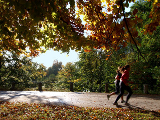 4 Ways to Get Fit This Fall