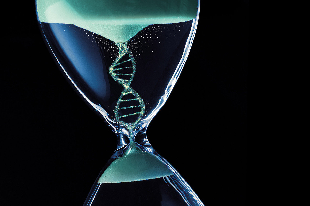 48 Strand DNA Activation & Restructuring