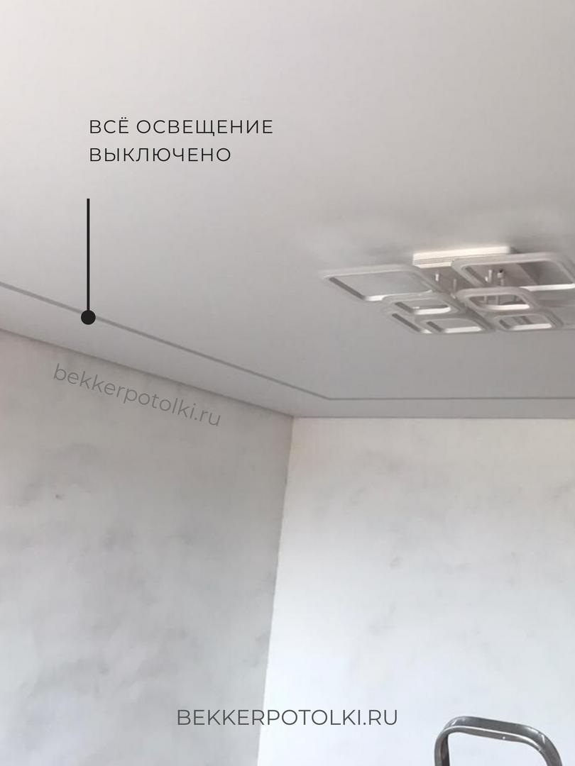 Натяжной потолок Сыктывкар в зал.png