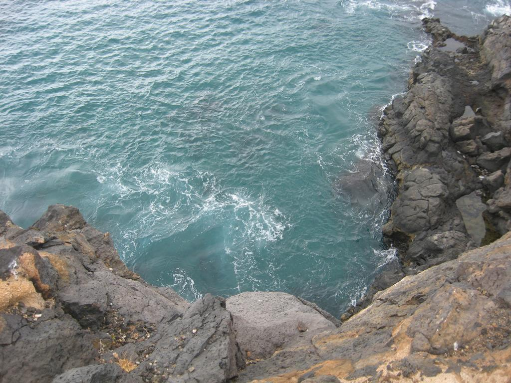 Tenerife Mai 2008 (105).JPG