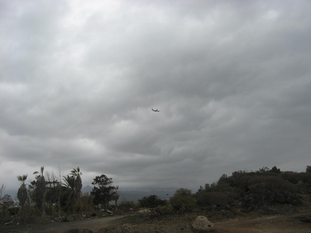 Tenerife Mai 2008 (101).JPG