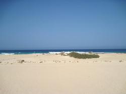 Fuerteventura Juni 2011 (30).JPG