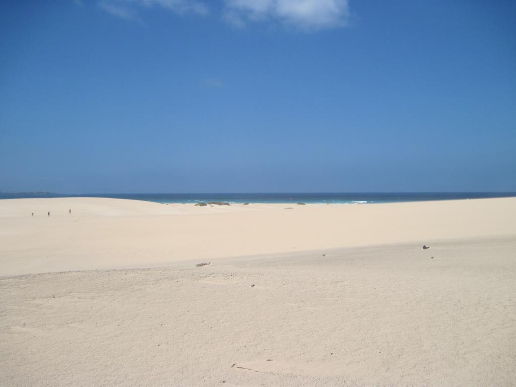 Fuerteventura Juni 2011 (115).JPG