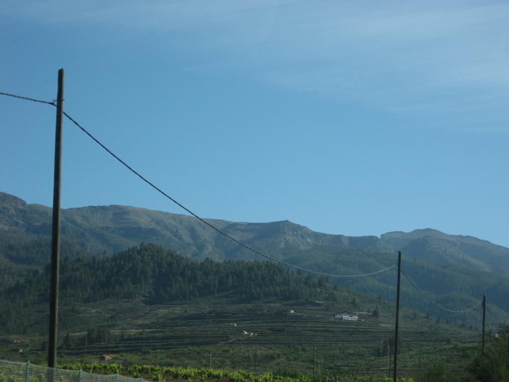 Tenerife Mai 2008 (378).JPG