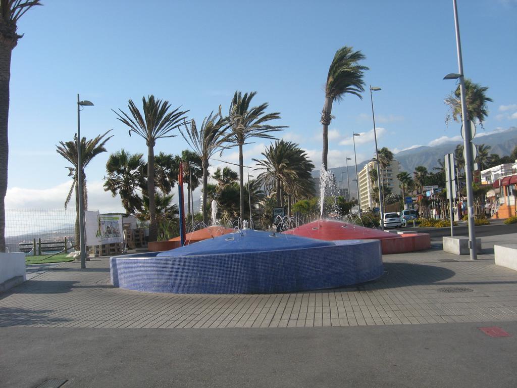 Tenerife Mai 2008 (132).JPG