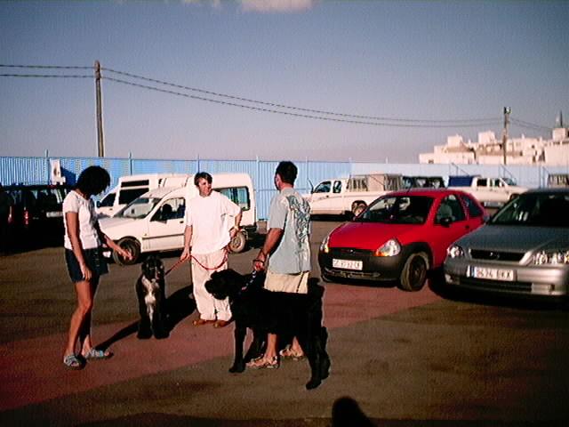 Hundeaustellung Fuerte Oktober 2001 (67)