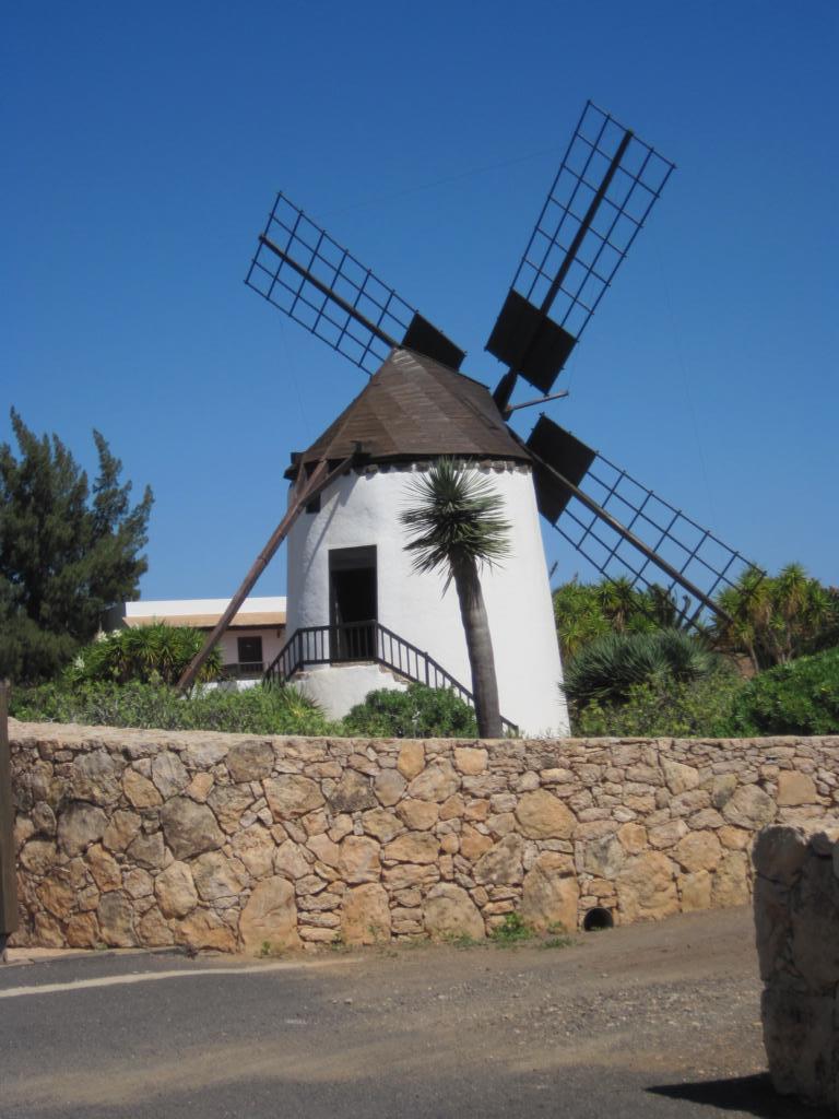 Fuerteventura Juni 2011 (37).JPG