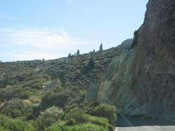 Tenerife Mai 2008 (466).JPG
