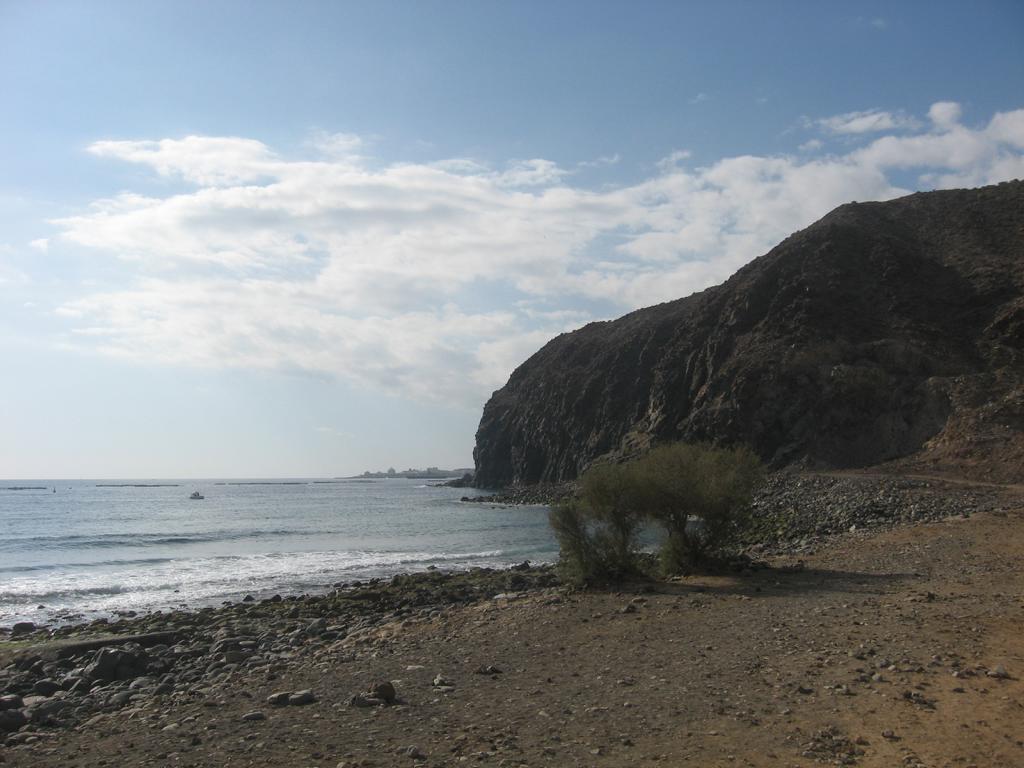 Tenerife Mai 2008 (176).JPG