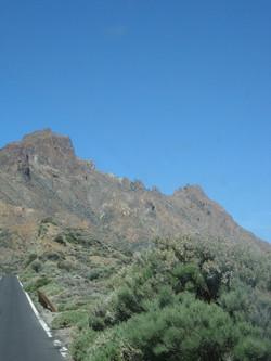 Tenerife Mai 2008 (530).JPG