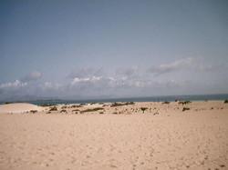 Leben auf Fuerte 2001 (84)