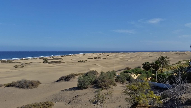 Gran Canaria Mai 2015 (74).JPG