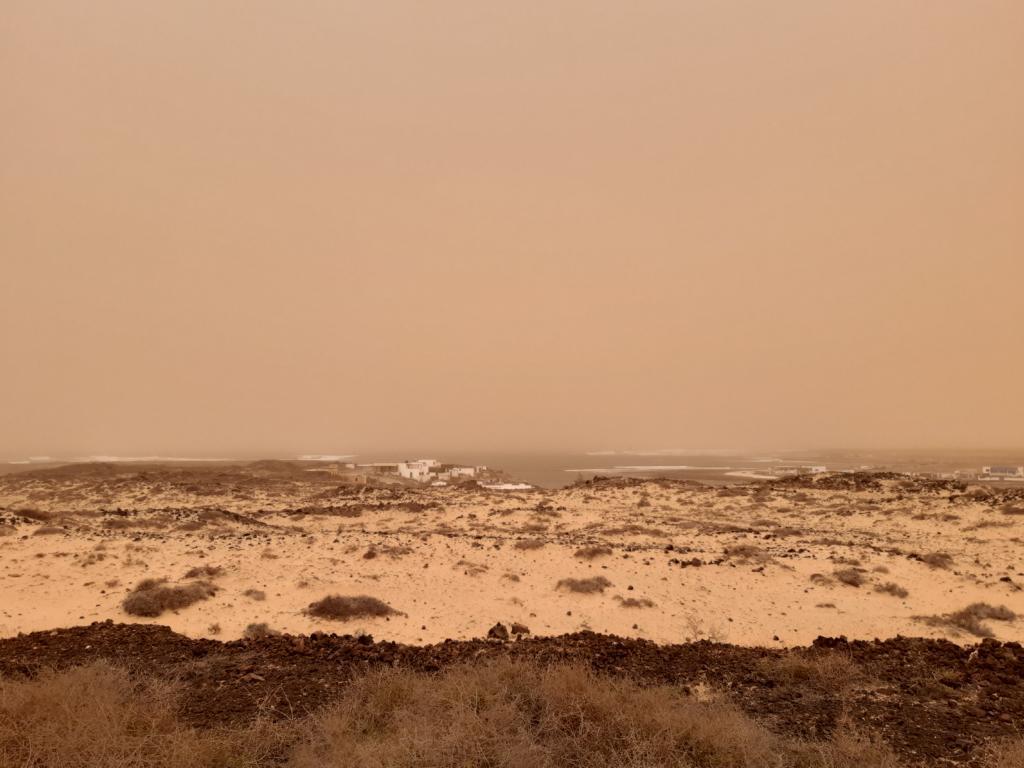 Fuerteventura Febr 2020 web (55)