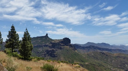 Gran Canaria Mai 2015 (57).JPG