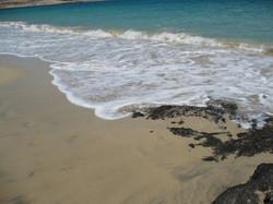 Fuerteventura Mai2009 (22).JPG