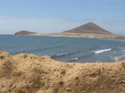 Tenerife Mai 2008 (88).JPG