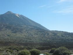 Tenerife Mai 2008 (444).JPG