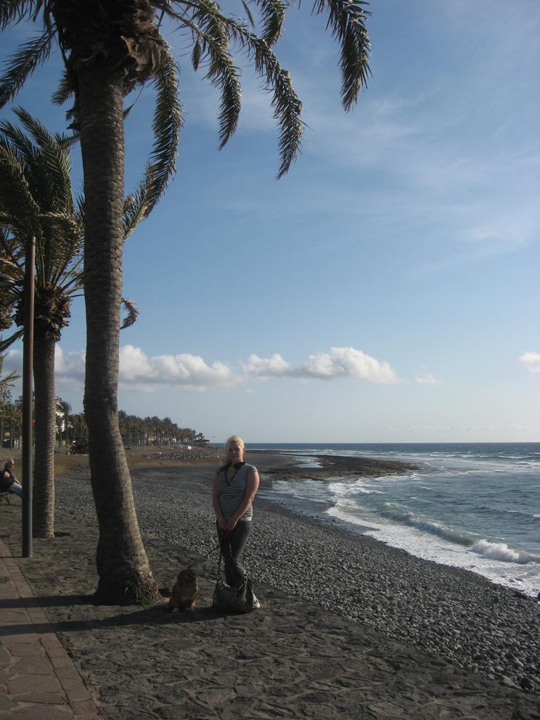 Tenerife Mai 2008 (136).JPG