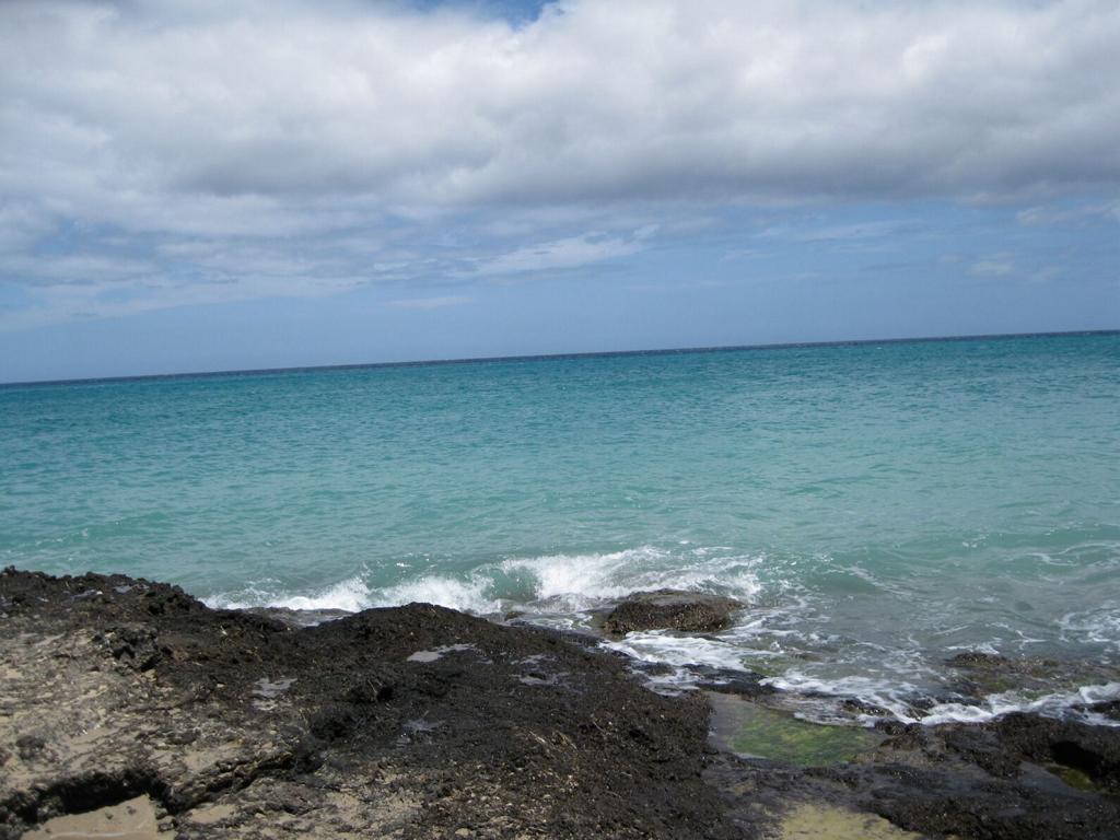 Fuerteventura Mai2009 (21).JPG