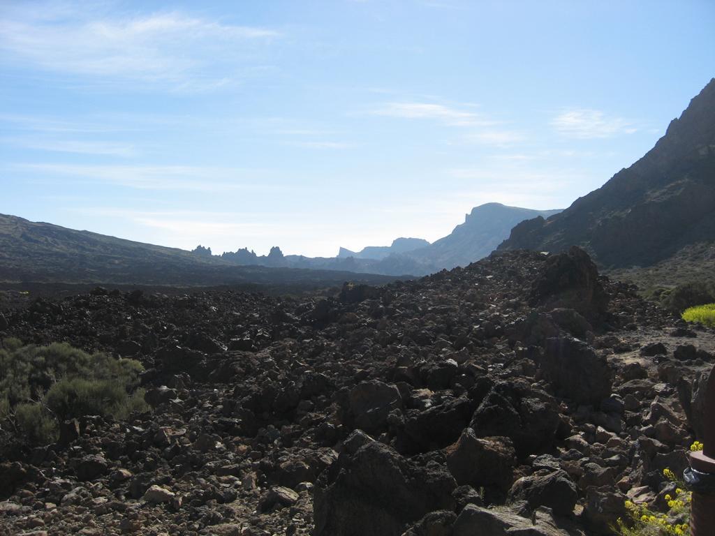 Tenerife Mai 2008 (433).JPG