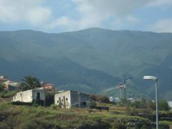 Tenerife Mai 2008 (209).JPG