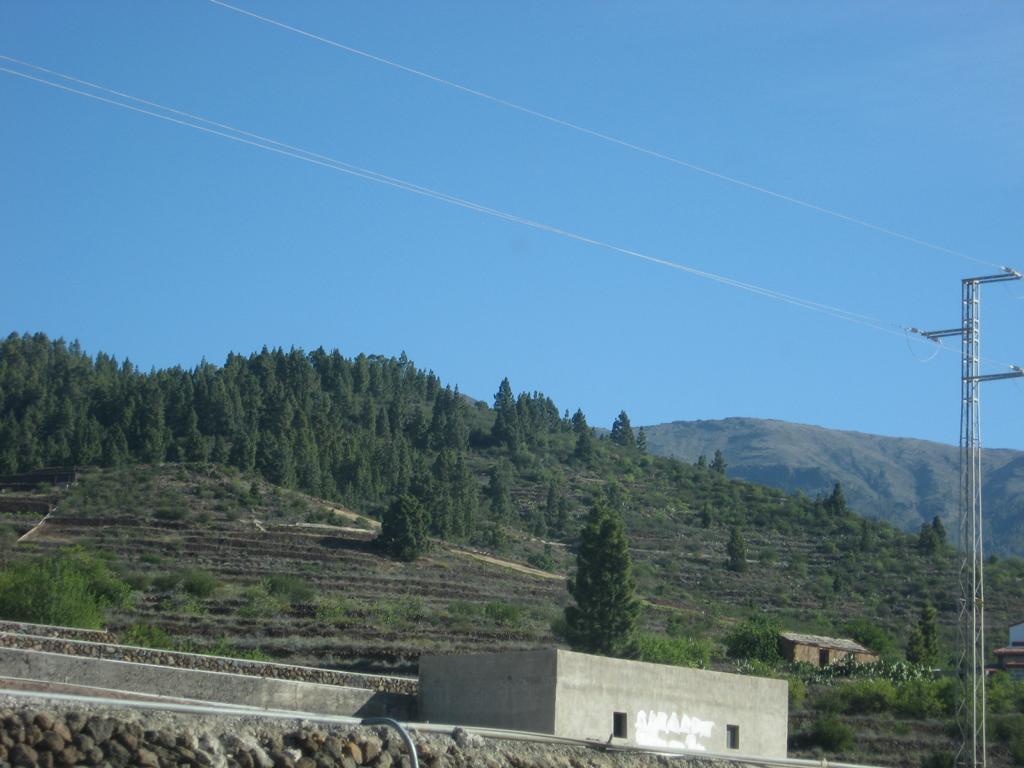 Tenerife Mai 2008 (379).JPG