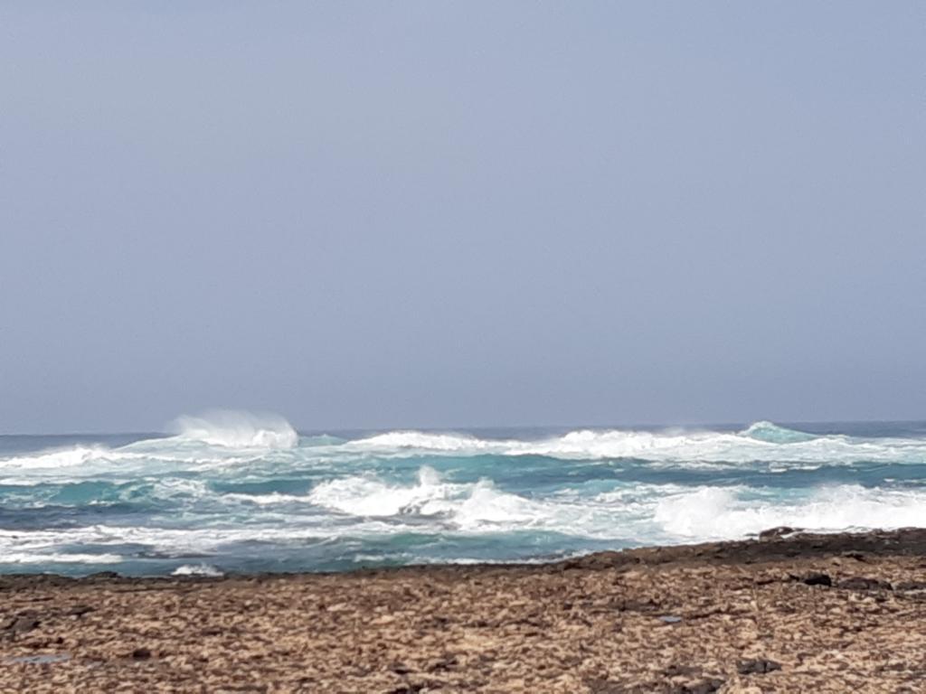 Fuerteventura Febr 2020 web (6)