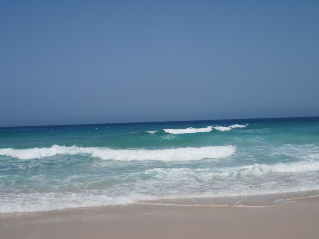 Fuerteventura Juni 2011 (32).JPG