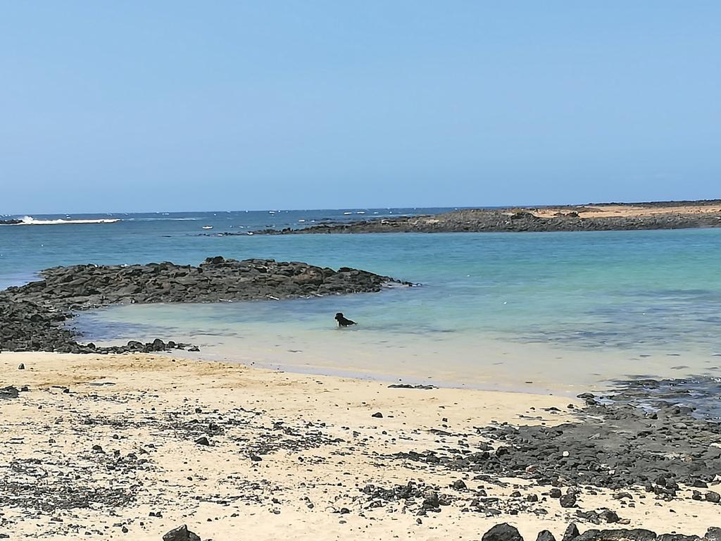 Fuerteventura 08 2018 (42)