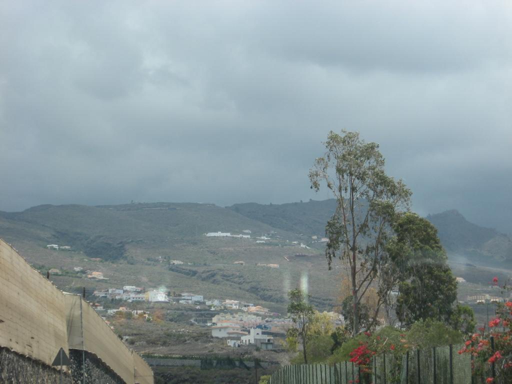 Tenerife Mai 2008 (318).JPG