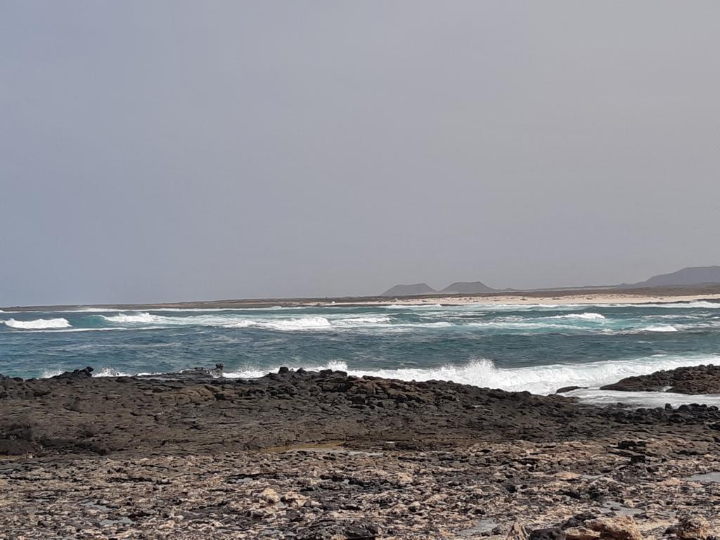 Fuerteventura Febr 2020 web (11)