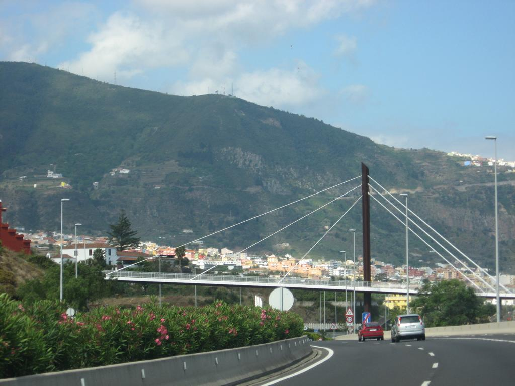 Tenerife Mai 2008 (220).JPG