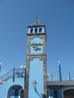 Tenerife Mai 2008 (40).JPG