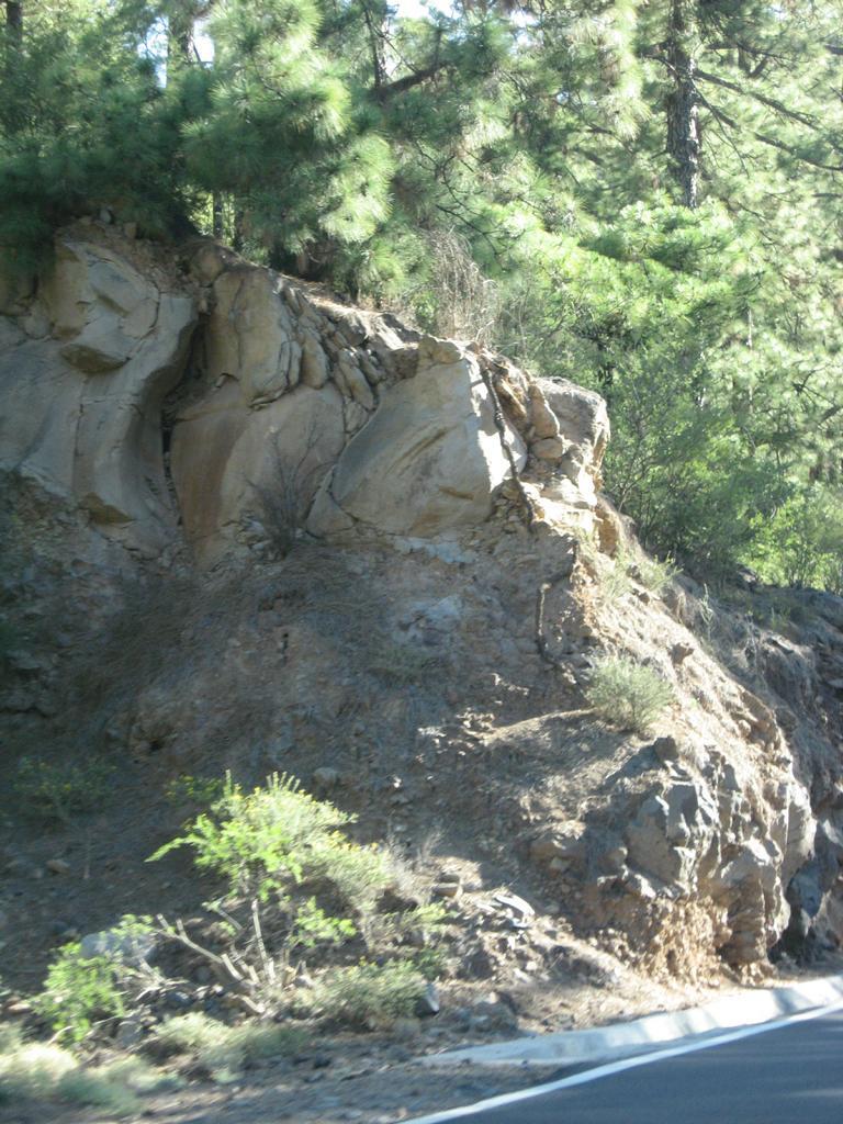Tenerife Mai 2008 (381).JPG