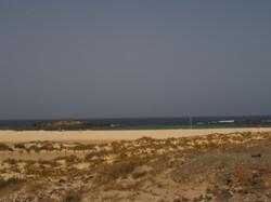 Fuerteventura Juni 2011 (9).JPG