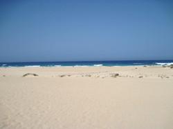 Fuerteventura Juni 2011 (29).JPG