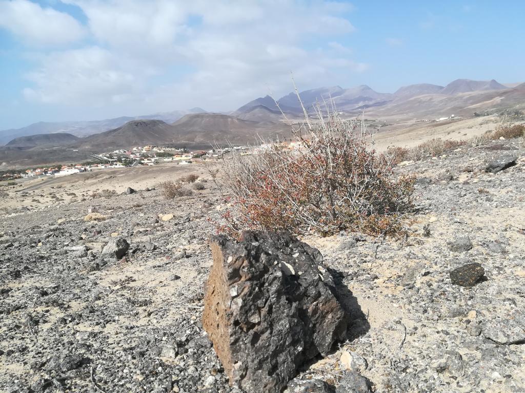 Fuerteventura 08 2018 (73)