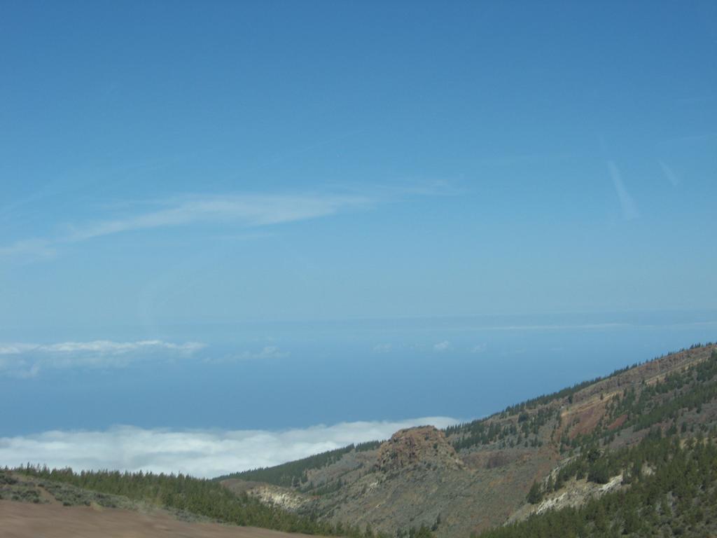 Tenerife Mai 2008 (546).JPG