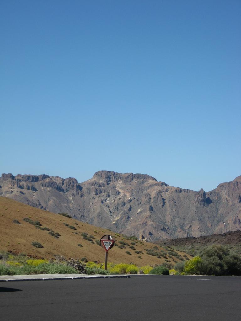 Tenerife Mai 2008 (488).JPG