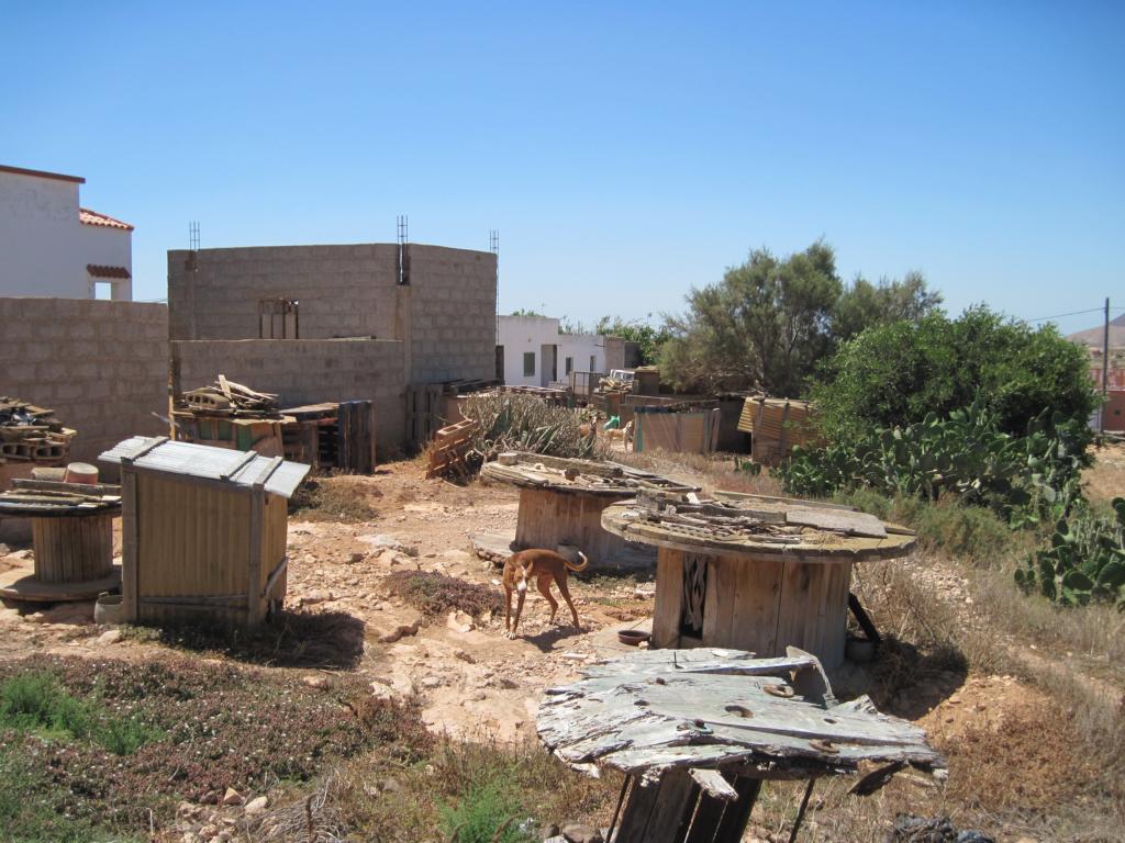 Fuerteventura Juni 2011 (40).JPG