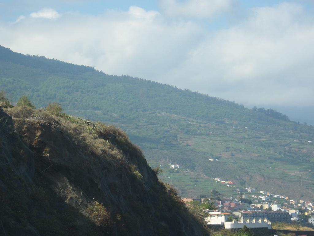 Tenerife Mai 2008 (207).JPG