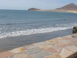 Tenerife Mai 2008 (85).JPG
