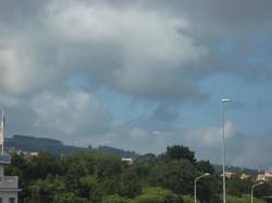 Tenerife Mai 2008 (200).JPG