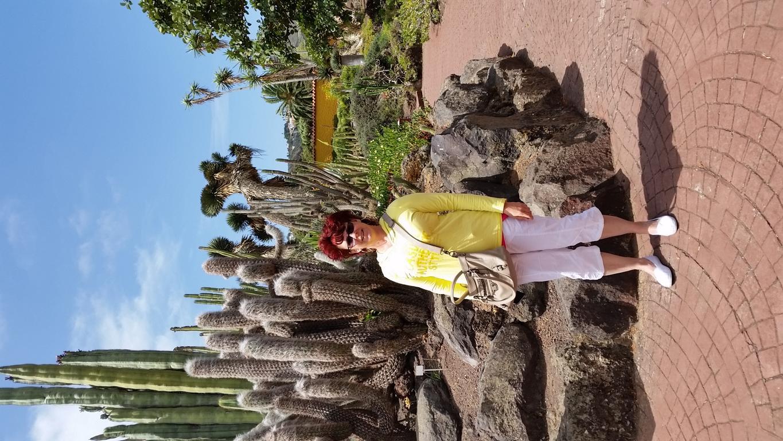Gran Canaria Mai 2015 (31).JPG